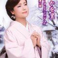 葵かを里ビデオ・コレクション2~雪の兼六園 tkba1243